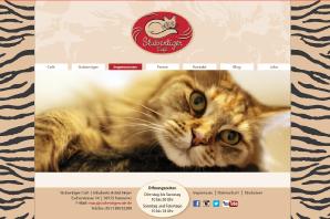 Website Internetagentur Mainz-Bingen